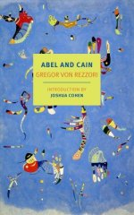 abel-and-cain-david-dollenmayer-9781681373256